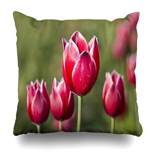 Funda de Almohada Tulipán Rojo Brillante Tulipanes Blancos ...