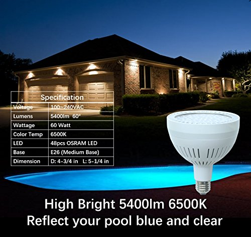 Review TOVEENEN LED Pool Light