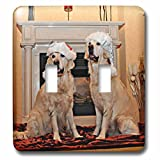 3dRose Sandy Mertens Christmas Animals - Two Golden Retrievers in Santa Hats by the Fireplace - Light Switch Covers - double toggle switch (lsp_269522_2)