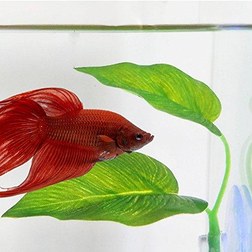 Betta Fish Leaf Pad Betta Hammock Toys Plastic Aquarium