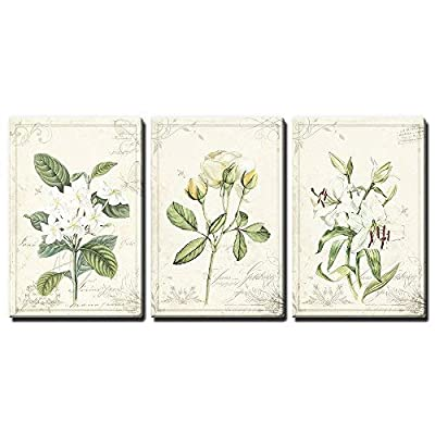 Premium Creation, Alluring Composition, 3 Panel Vintage Style White Flowers x 3 Panels