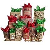 Besti - Bolsas de regalo de Navidad con papel de seda y envoltorio plano (juego de 28 piezas) pequeñas, medianas y grandes tamaños | regalos reutilizables | Papá Noel, reno, muñeco de nieve