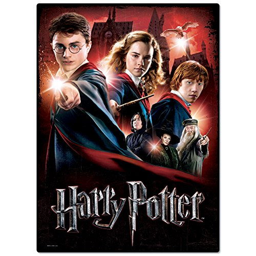 WREBBIT 3D Hogwarts School Poster Puzzle (500 Pieces)