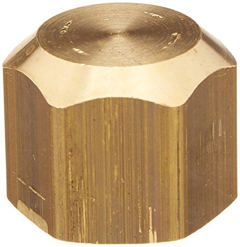 Delta Faucet RP34849 1/2-Inch Female IPS Brass Cap