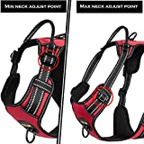 4XPAW Dog Harness with Padded Handle,Nylon Oxford