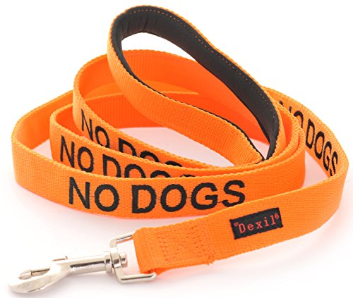 NO DOGS Orange Color Coded 2 4 6 Foot Padded Dog Leash (Not Good With Other Dogs) PREVENTS Accidents By Warning Others of Your Dog in Advance (6 Foot Leash) (Leash Dog Color Orange)