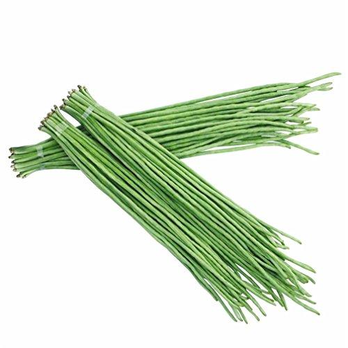 Vastravel Yard Long Bean Green Asparagus Bean 100 Seeds