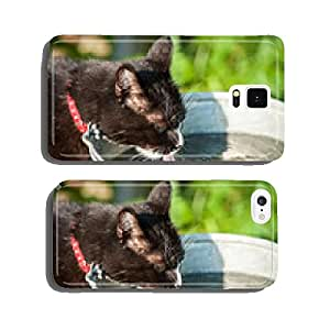 Cat drinking a water from the bucket cell phone cover case Samsung S5