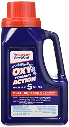 Thompson's TH.087731-42 WaterSeal Oxy Foaming Action Exterior Multi-Surface Cleaner, 2 lb