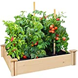 Greenes Fence Cedar Raised Garden Bed (42'' x 42'' x 5.5'', Wood)