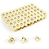 Z-COLOR 100 Sets Tone Magnetic Buttons Snap Clasps For Handbag Purses, DIY Accessories,Bags, Jackets, Covers etc (14mm, Gold)
