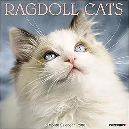 Ragdoll Cats 2018 Calendar