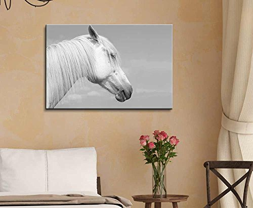 Head of a White Horse Against The Sky Wall Decor