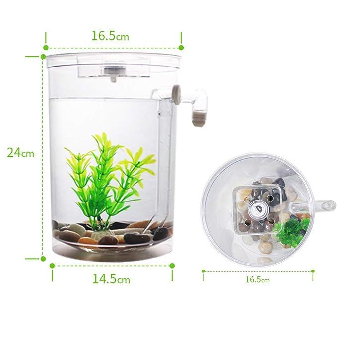 Autolimpiante Desktop Mini Creative Goldfish Bowl, Acuario de Cambio de Agua automático pequeño: Amazon.es: Deportes y aire libre