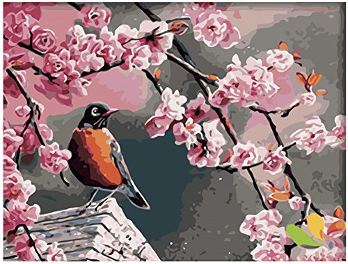 Diy Oil Painting Paint by Number Kit for Adults Beginner 16x20 inch - Pink Flower and Bird Pattern, Drawing with Brushes Christmas Decor Decorations Gifts (Without Frame)