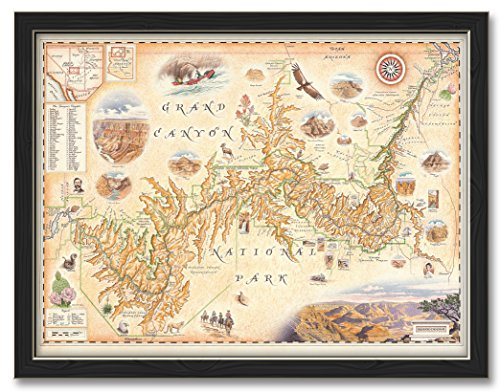 """Grand Canyon NP Professionally Framed Wall Decor by Xplorer Maps. Print Size: 18"""" x 24"""" Framed Art Size: 20"""" x 26"""""""