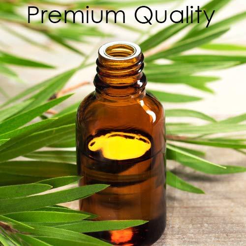 MAJESTIC PURE Tea Tree Oil - Pure and Natural Therapeutic Grade Tea Tree Essential Oil - Melaleuca Alternifolia - 4 fl oz