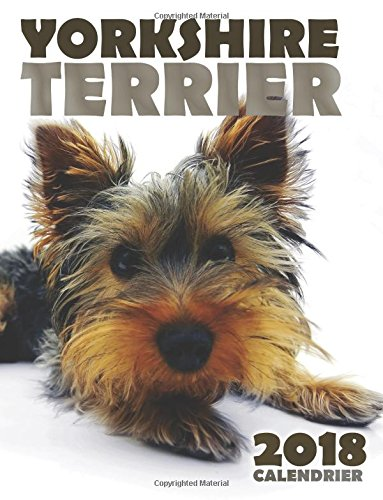 Read Online Yorkshire Terrier 2018 Calendrier (Edition France) (French Edition) PDF