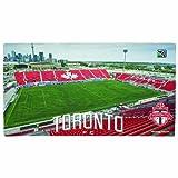MLS Toronto FC Floor Mat