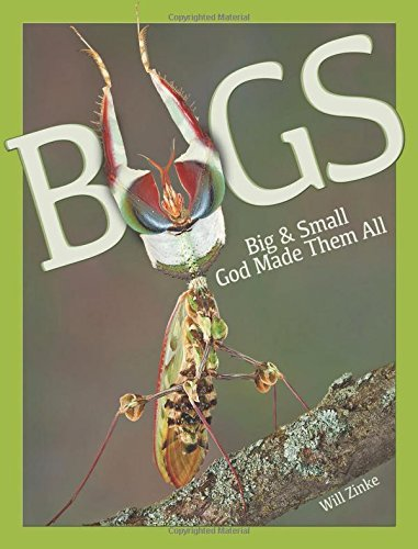 Bugs Big & Small God Made Them All by William Zinke (2014-09-01)