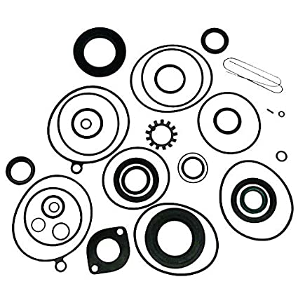 Amazon Com Complete Seal Kit Oem875741 1 By Sierra Inc Sports