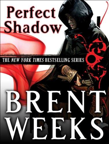 Perfect Shadow: A Night Angel Novella (English Edition)