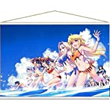 Most lottery IS Infinite Stratos 2nd ACCEL last one Prize hanging type Art posters original collaboration
