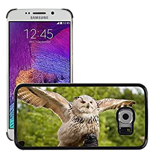 Super Stella Slim PC Hard Case Cover Skin Armor Shell Protection // M00107764 Eurasian Adler Owl Bird Of Prey // Samsung Galaxy S6 EDGE (Not Fits S6)