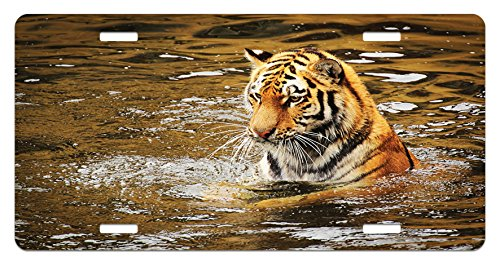 Lunarable Animal License Plate by, Wild Life Safari Big Cat Tiger with Stripes in a African Lake Swimming Nature Print, High Gloss Aluminum Novelty Plate, 5.88 L X 11.88 W Inches, Multicolor
