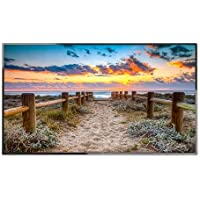 NEC 55 LED Backlit Commercial-Grade Display with Integrated ATSC/NTSC Tuner