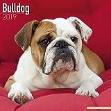 Bulldog Calendar
