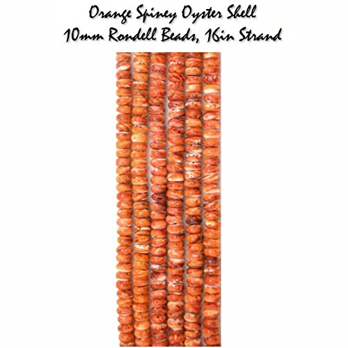 RARE Genuine Orange Spiney Oyster Shell 10mm Rondell Gemstone Beads, 16in Strands for Jewelry (Turquoise Spiney Oyster)