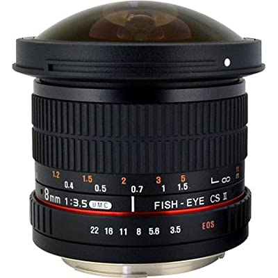 Rokinon 8mm f3.5 AS IF MC CSII DH Fisheye Lens with Removable Hood for Olympus and Panasonic Micro 4/3 (MFT) Mount Digital Cameras (HD8M-MFT) from Rokinon