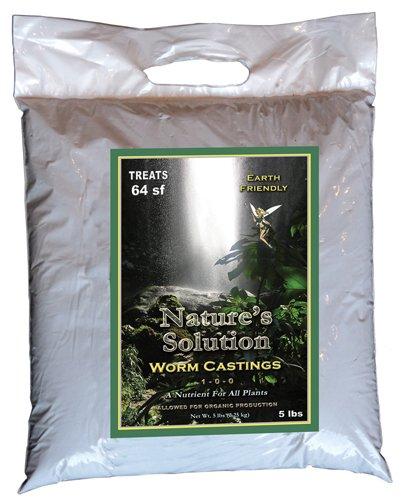 Casting Worm - 9