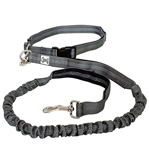Premium Quality Hands Free Lightweight Reflective Bungee Dog Leash For Running, Walking & Hiking | 4-Foot Long Fits Sizes 28-48 (Grey/Black)