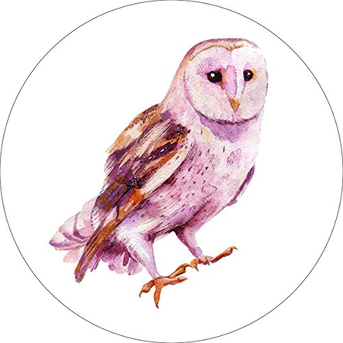 Owl Home Wall Shelf Decor Animal Decorations Watercolor Round Sign - 12 Inch, Metal by iCandy Products Inc