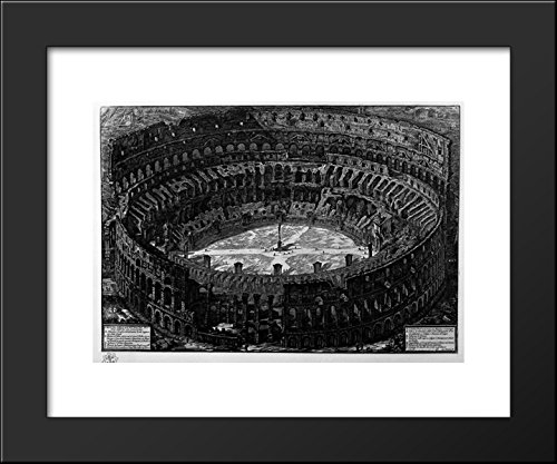 Framed Coliseum (View of the Flavian Amphitheatre, called the Coliseum (a bird) 20x24 Framed A.)