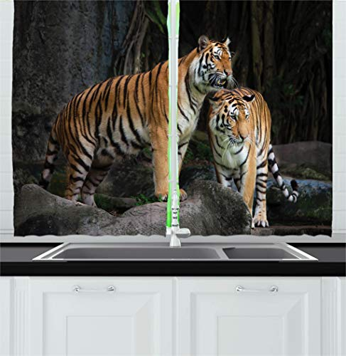Ambesonne Animal Decor Kitchen Curtains, Tiger Couple in The Jungle on Big Rocks Image Wild Cats in Nature Print, Window Drapes 2 Panels Set for Kitchen Cafe, 55 W X ()