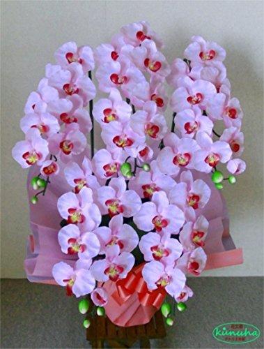 フラワーデザイナー制作の胡蝶蘭【光触媒】胡蝶蘭-淡いピンク5本立て(造花)ウィルス 細菌 有害物質を分解除去する 東芝 RENECAT(ルネキャット)光触媒スプレー塗布 B013O3T9S8