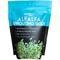 Alfalfa Sprouting Seed | Non GMO | Grown in USA | from Our Farm to Your Door (1 Pound (16oz))