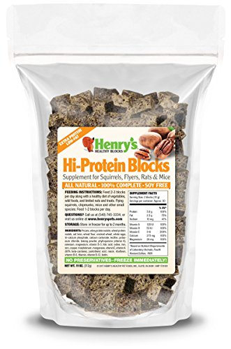 Hi-Protein Blocks for Squirrels, Flyers, Rats & Mice, 11 oz by Henry's Healthy Pet Foods