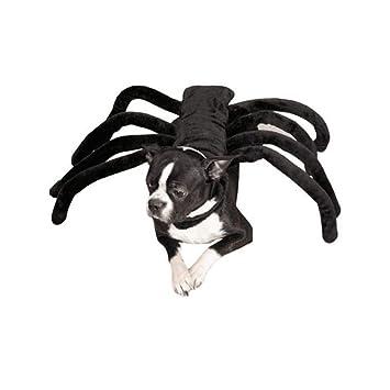 Li Hua Hunde-Kost/üm f/ür kleine Hunde und Katzen mit Fledermaus-Motiv Halsband Fotoshow und Spieldaten f/ür Halloween Weihnachten Geburtstage