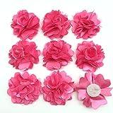 PEPPERLONELY 10PC Set Hot Pink Lace Chiffon Peony Fabric Flowers, 2 Inch