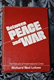 Between Peace and War : The Nature of International Crisis, Lebow, Richard N., 0801823110