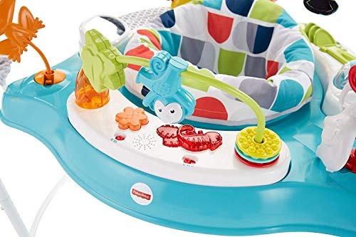 Fisher-Price Color Jumperoo, Activity Jumper