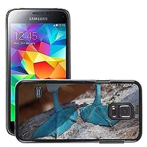 Etui Housse Coque de Protection Cover Rigide pour // M00113203 Azul Con Boobie Ecuador Pato // Samsung Galaxy S5 MINI SM-G800