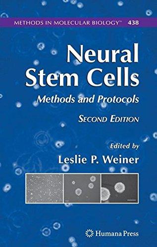 Neural Stem Cells  Methods And Protocols  Methods In Molecular Biology