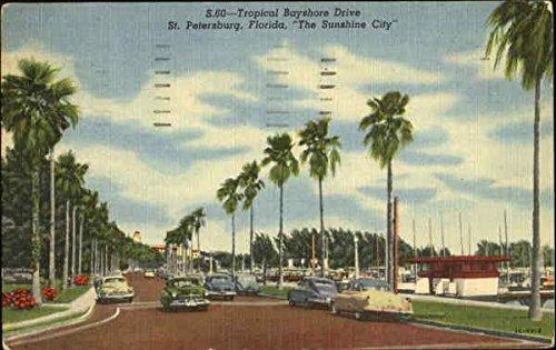 Tropical Bayshore Drive St. Petersburg, Florida Original Vintage - Bayshore Sun
