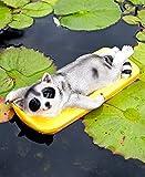 Best GENERIC Friends Statues - Summertime Fun Floating Friend Statue Raccoon Review