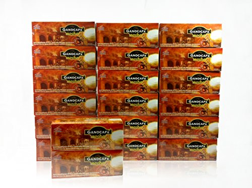 20-boxes-gano-excel-cafe-mocha-instant-coffee-free-20-sachets-by-newtonstore-plus-free-expedited-shi